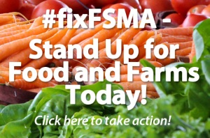 fsma_homepage_image